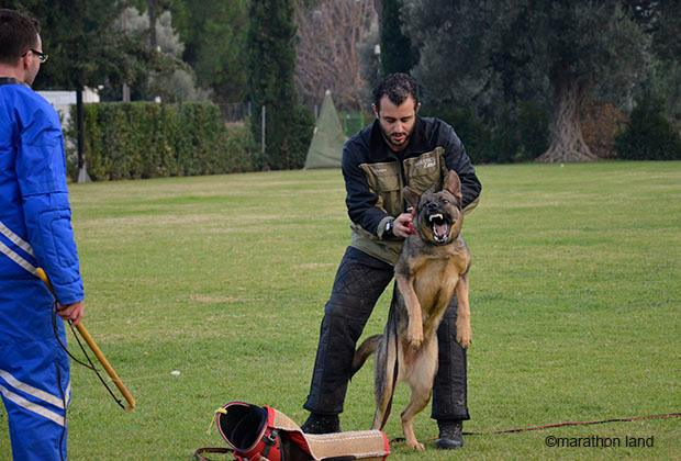 January 2014 Workshop G. Grammozis & Chr. Broda