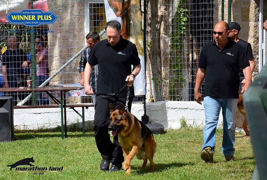 ΚΟΓΠΕ Hellenic Sieger Show 2015