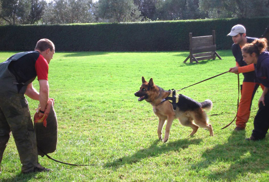 November 2010 Workshop Jorg & Corina Schwabe